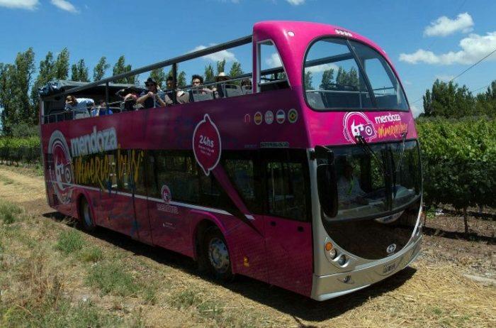 Mendoza: un viaje al corazón delvino en un bus turístico sin techo