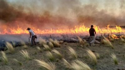 Los incendios en el centro del país arrasaron más de 600 mil hectáreas