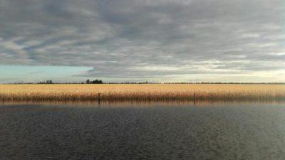 Inundaciones le cuestan al campo santafesino U$S 1.100 millones