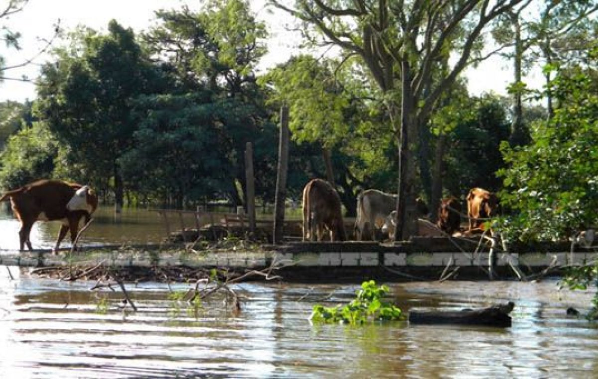 Fondos de ATN para municipios chaqueños afectados por inundaciones
