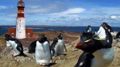 Un paseo por los parques de Patagonia