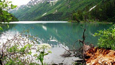 """El Bolson: Una expedición desafía al """"okupa"""" Joe Lewis en la Patagonia"""