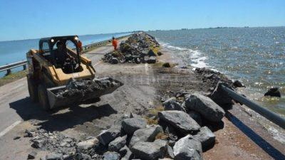 Unas setenta mil hectáreas productivas están afectadas por la crecida de La Picasa
