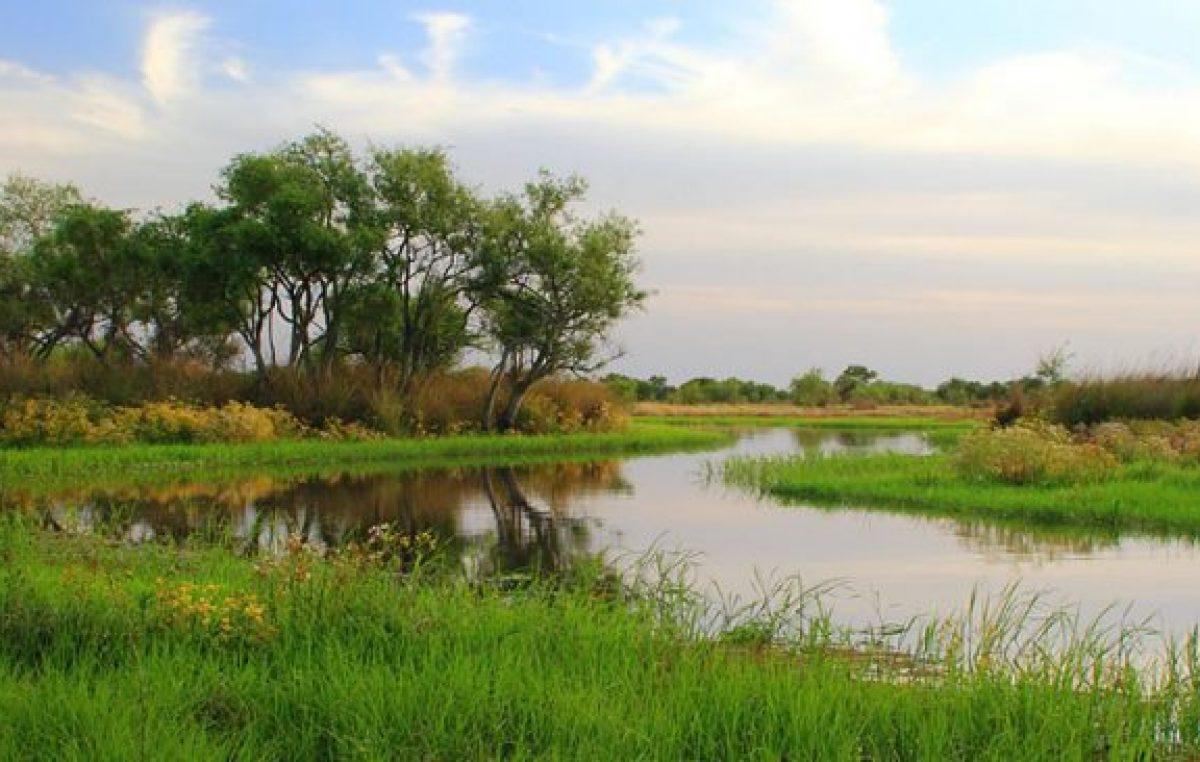 Crearon la Reserva Natural Urbana de Diamante en terrenos del ex Regimiento