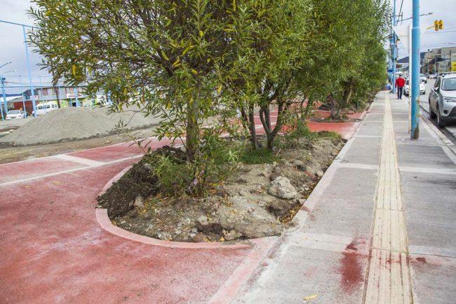 Se llevan construidos más de 1400 metros cuadrados de veredas en Ushuaia