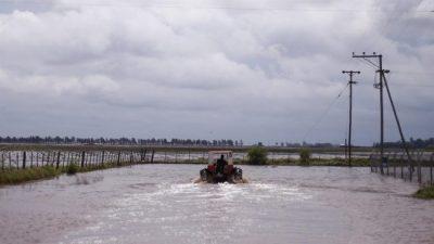 En el sur cordobés, el agua sepulta miles de hectáreas y siguen cerrando tambos