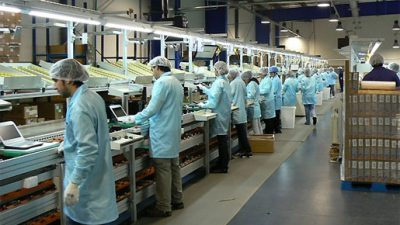 Fuerte caída en la fabricación de electrónicos