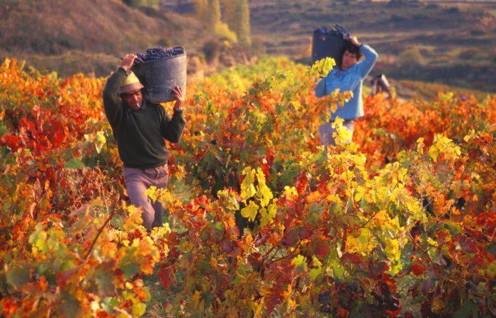 Escapada de otoño a Mendoza