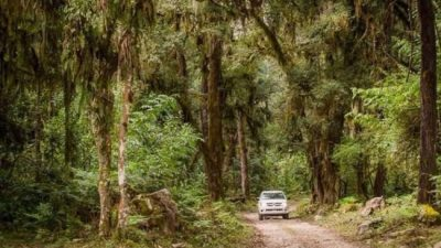Orán se decidió a ser un destino de excelencia para practicar el ecoturismo