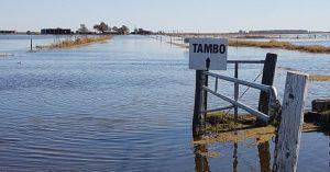 Tambos en ruinas: productores del sur de Córdoba buscan migrar a otras provincias