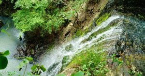 El parque provincial de la Sierra de San José un lugar para aventurarse en la selva