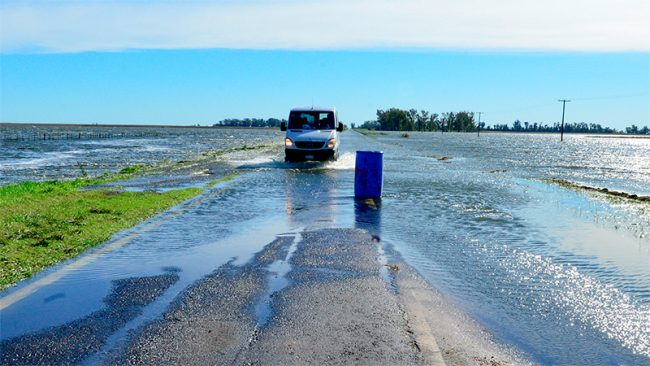 Hay 6 millones de hectáreas afectadas por las lluvias sólo en Buenos Aires
