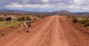 """La Quiaca: Nueva reunión binacional por la """"Ruta del Bicentenario"""""""