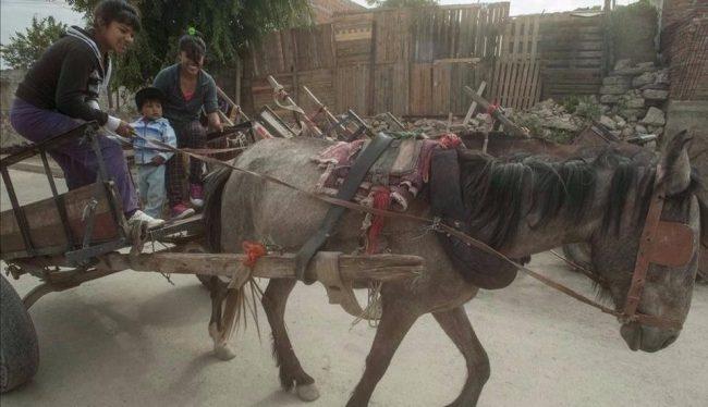 Darán 220 motocargas para que los carreros salteños no usen caballos