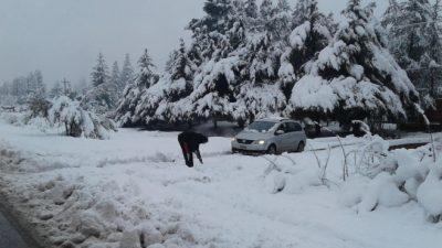 Colonia Suiza no tiene electricidad hace cinco días