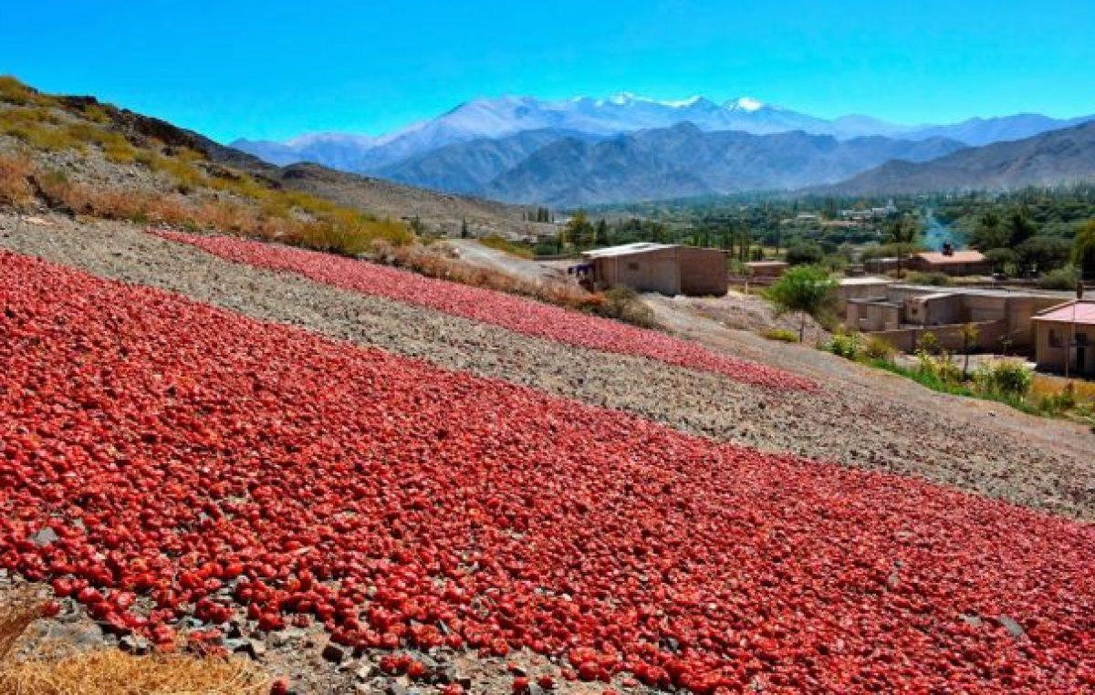 Cachi: Parajes rurales tienen beneficios