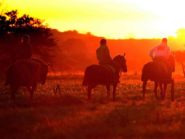El turismo rural, una de las opciones para vacacionar en Entre Ríos