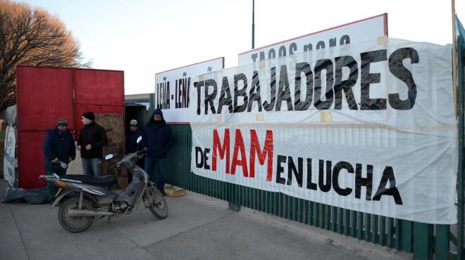 Gobierno de Neuquén le compra leña a MAM para que los empleados cobren sus sueldos