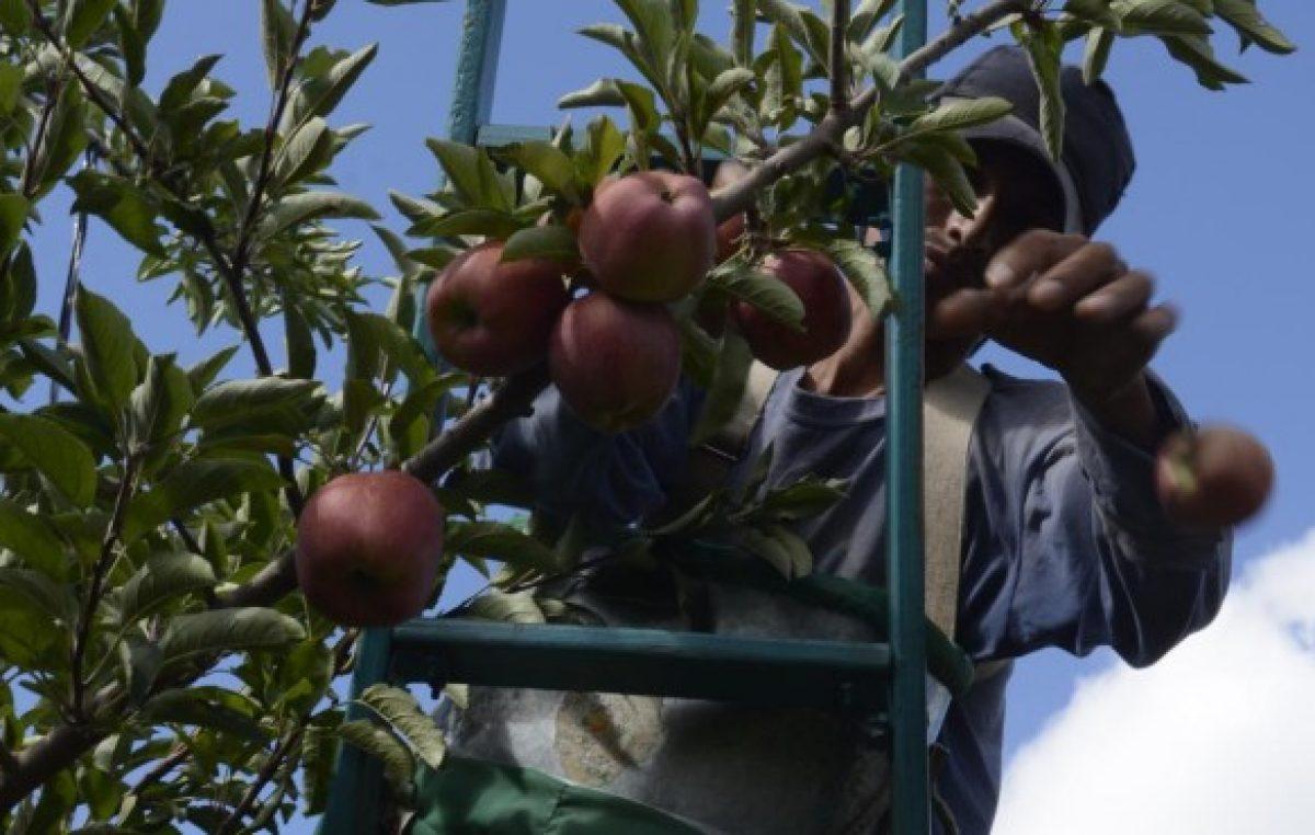 Río Negro: Nación criticó al sector frutícola y recibió duras respuestas