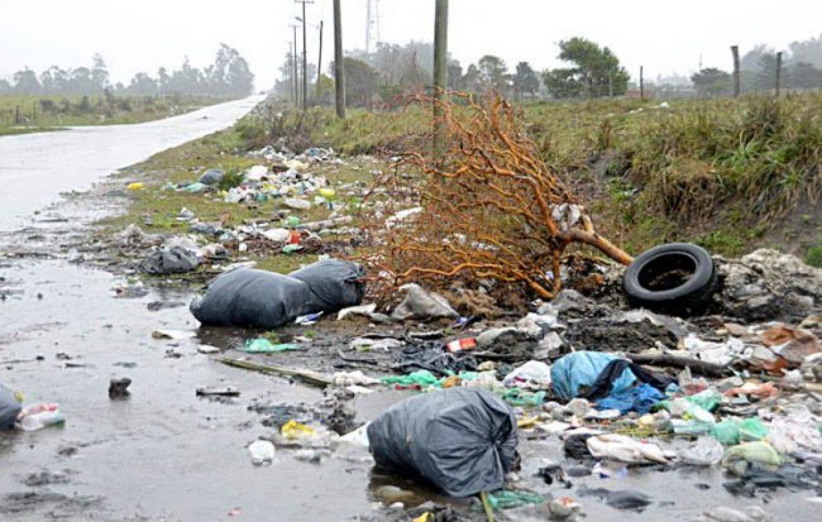 Mar del Plata, repleta de basura y otra vez con un predio colapsado