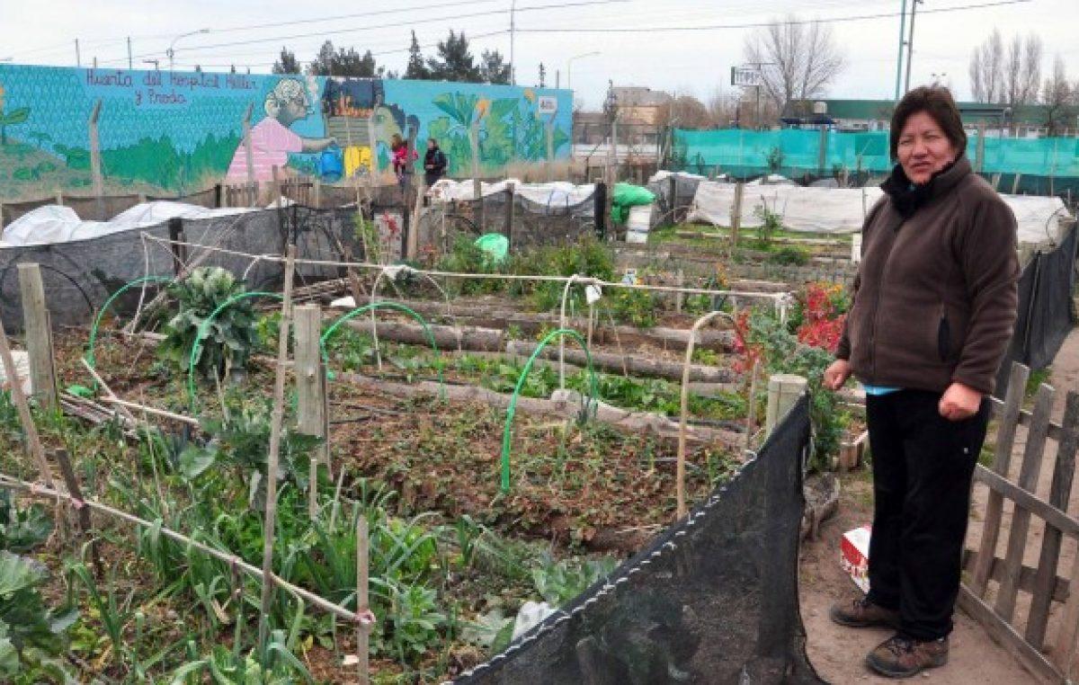Las huertas familiares mueven la economía de 8.000 neuquinos