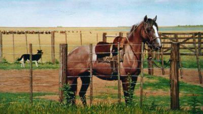 Santa Fe: El impacto del turismo rural en las economías regionales