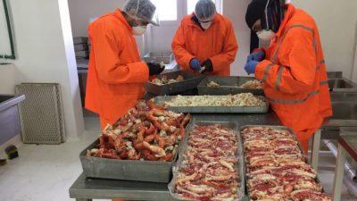 La Planta Municipal de Ushuaia trabaja procesando centolla, mejillones y cholgas
