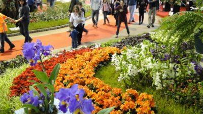 Polémica y enojo: La Fiesta de la Flor de Escobar no será apoyada por el gobierno nacional