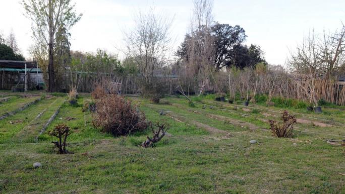 """Al final, Las Heras le compró a Capital el """"molesto"""" terreno del vivero municipal"""