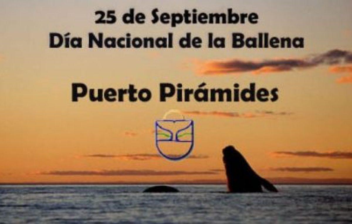 Fiesta Nacional de la Ballena, Puerto Pirámides