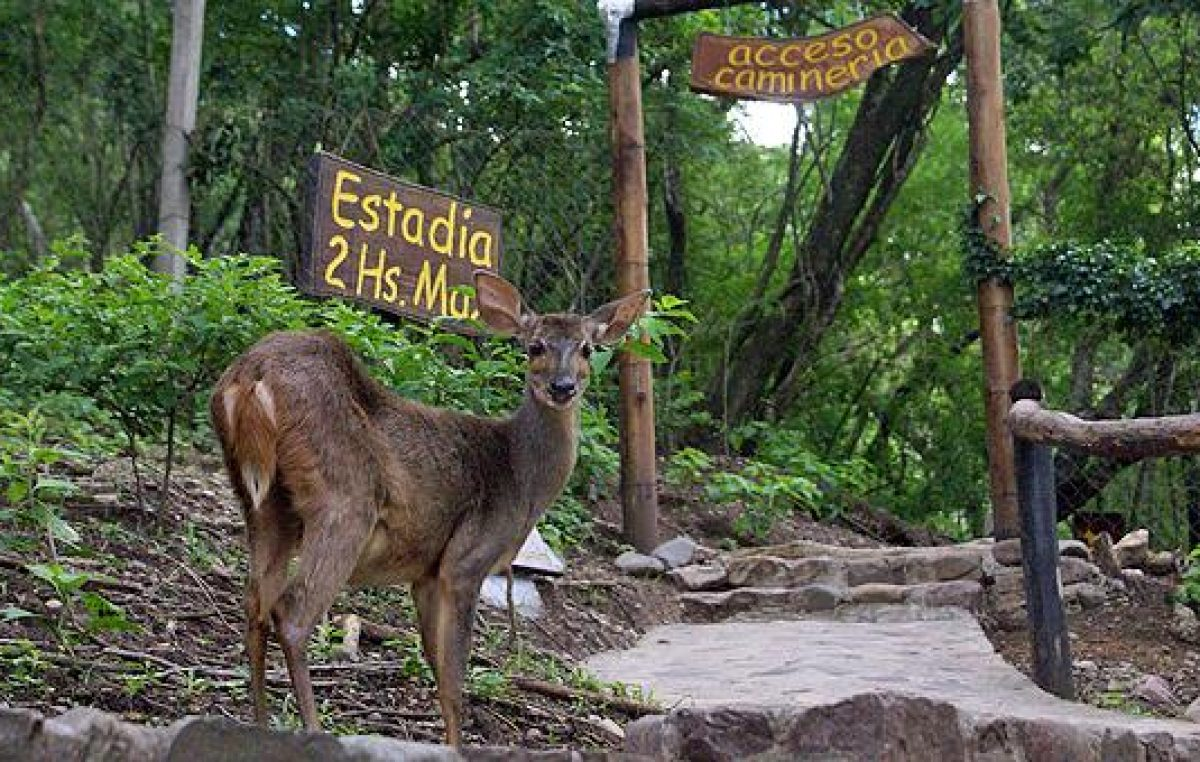 Reinauguraron el Parque Botánico Municipal de Jujuy