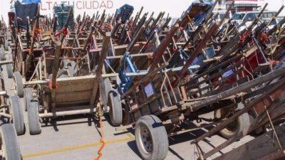 De los más de 200 caballos carreros que hay en Salta hasta ahora solo se entregaron 19