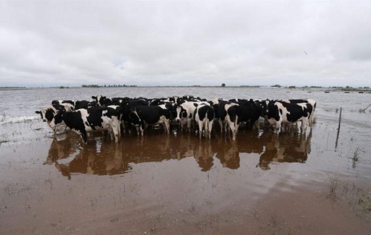 Santa Fe: Más cruces por el fondo de asistencia a los tamberos inundados