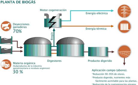El próximo fin de semana municipios de todo el país se darán cita en Cerrito por el Biogás