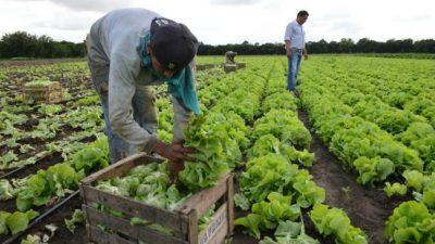 Alertan sobre la desaparición de pequeños y medianos productores