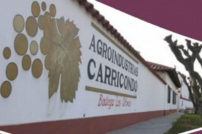 Junín avanza en la adquisición de la bodega Carricondo