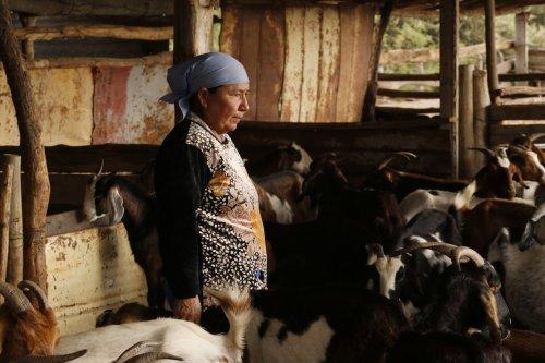 La alternativa: turismo rural comunitario en Salta