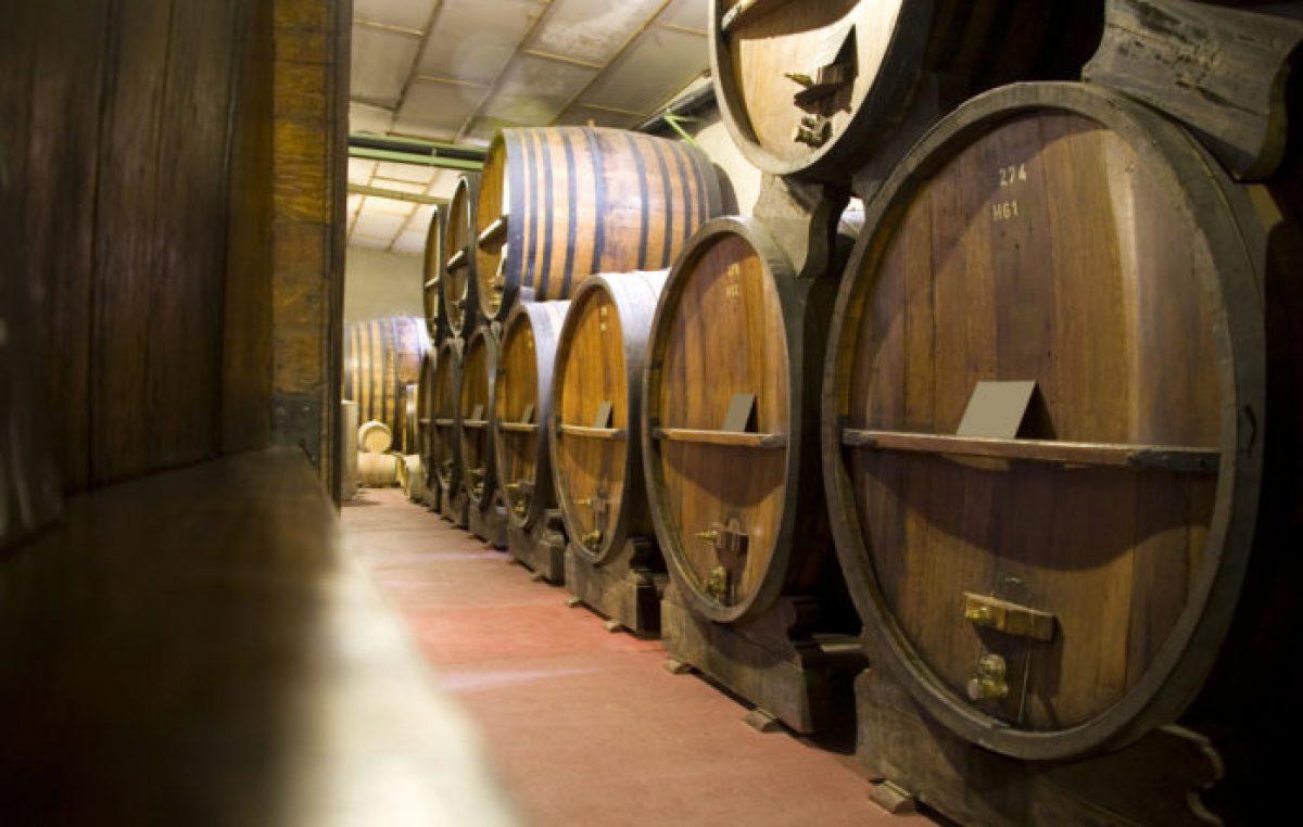Afirmaron que el trabajo de 40.000 sanjuaninos sería perjudicado por el impuesto al vino