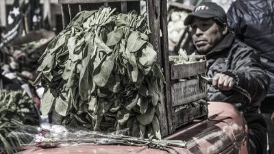 Pequeños productores repartieron 20 mil kilos de verduras a jubilados