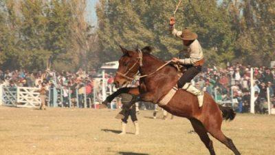 Guaymallén prohibió las domas y jineteadas y sancionará las carreras de galgos