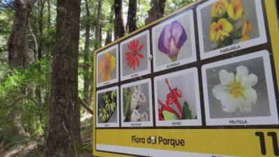 Están paralizadas las obras del parque municipal Llao Llao