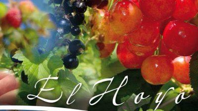 Fiesta Nacional de la Fruta Fina,12, 13 y 14 de Enero, El Hoyo