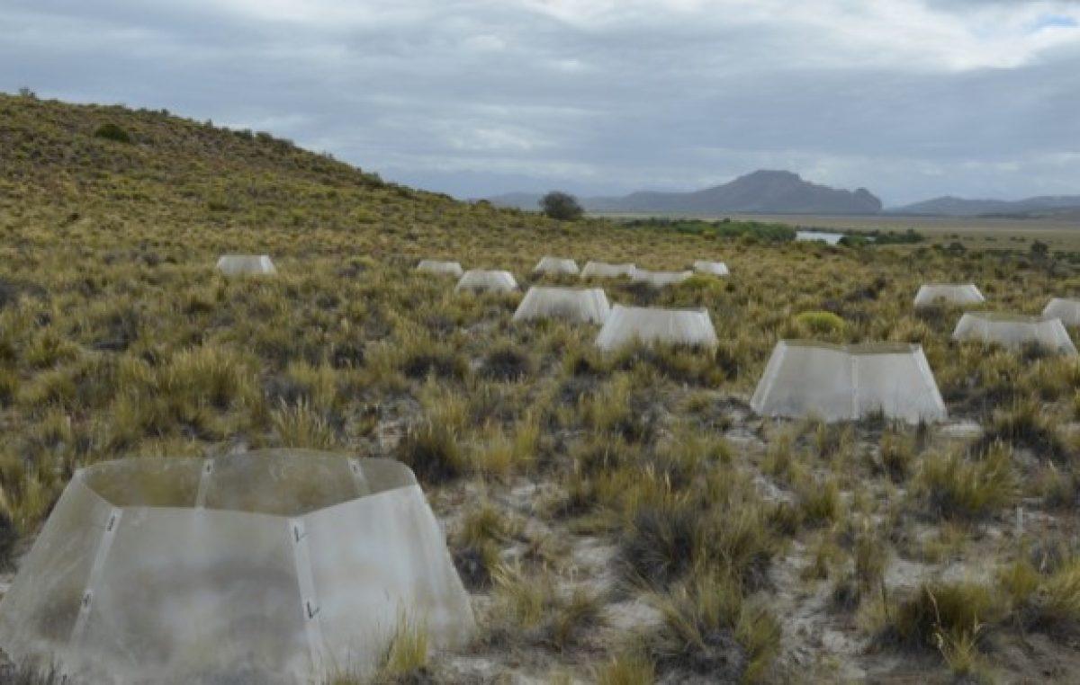 Bariloche, uno de los diez elegidos para estudiar el cambio climático