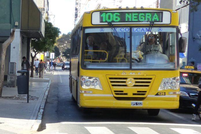 """Rosario: """"La falta de subsidios dificulta el inicio del nuevo sistema de transporte"""""""