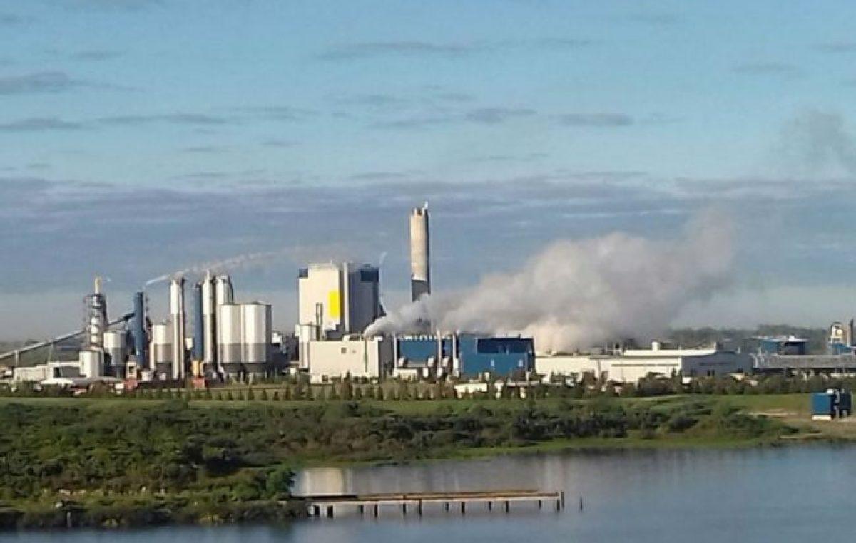 UPM-Botnia: el Municipiode Gualeguaychú exige que Nación vaya de nuevo a La Haya
