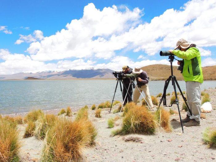 Expedición a las lagunas altoandinas