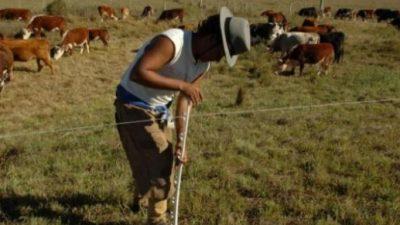 """Según un informe, en el sector agropecuario la mayoría de los trabajadores son """"tercerizados"""""""