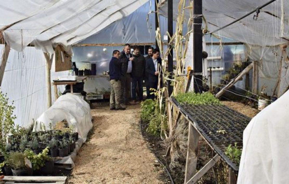 Cada vez más barilochenses acuden a la agricultura familiar