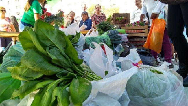 Verdurazo: productores reclaman la sanción de un proyecto de agricultura familiar