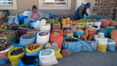 Comunidades de la Puna jujeña participaron de la Feria del Trueque
